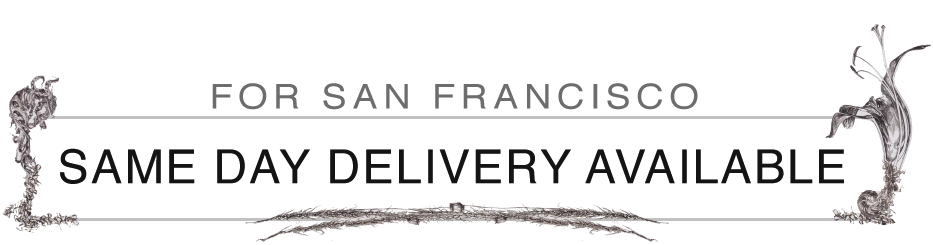 Same Day Delivery Available in San Francisco
