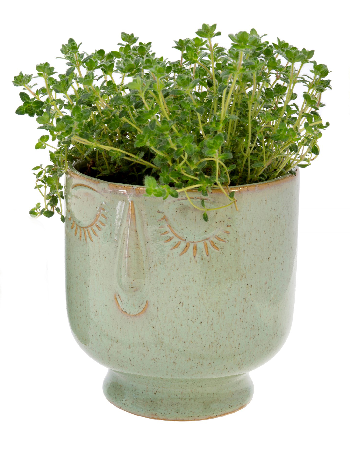 Friendly Face Pot Large, Moss